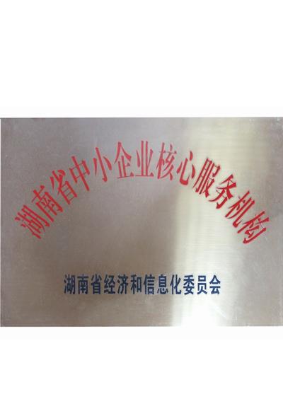 湖南省中小型企业核心服务机构